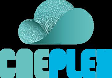 CAEplex Reviews