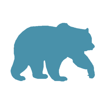Blue Bear Creative LLC