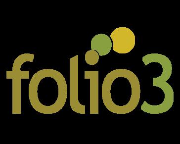 Folio3 Dynamics Services