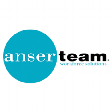 Anserteam Reviews