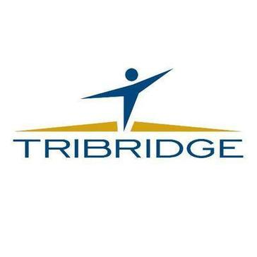 Tribridge Consulting Reviews