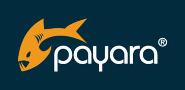 Payara Server Show