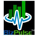 DayTimed by BizPulse