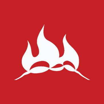 Fireant Studio