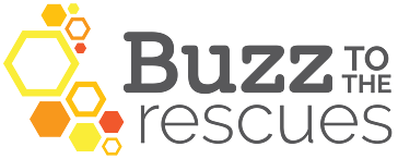 Buzz to the Rescues Reviews