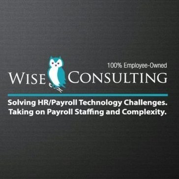 Wise Consulting Reviews