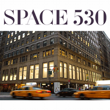 SPACE 530 Reviews