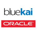 Compare Salesforce DMP vs. BlueKai