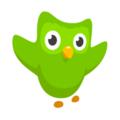 Compare Duolingo vs. Lingvist