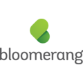 Compare Bloomerang vs. NetSuite