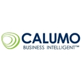 Compare Adaptive Insights vs. CALUMO