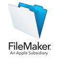 Compare FileMaker, Inc. vs. Kintone