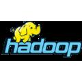 Compare Hadoop HDFS vs. Hortonworks Data Platform
