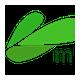 MLN Infotech