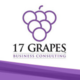 17 Grapes Business Consulting, LLC Logo