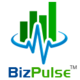 DayTimed by BizPulse Logo