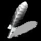 Wing Python IDE Logo