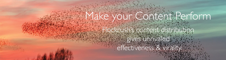 Flockrush