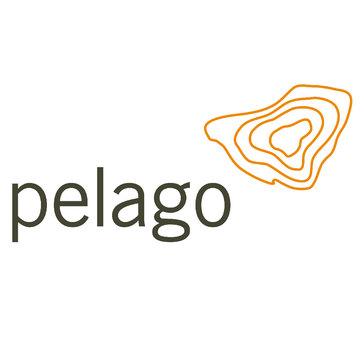 Pelago Corporation
